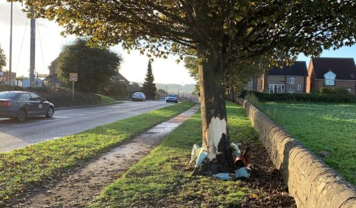 Three teenagers die after car crashes into tree