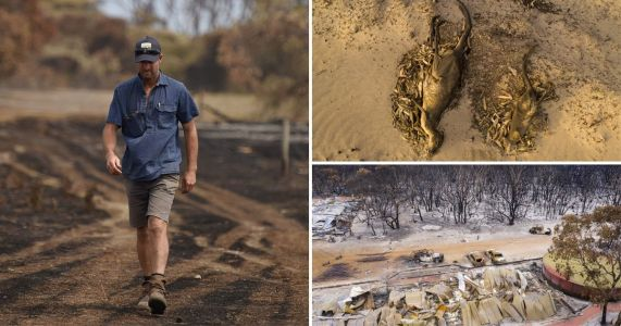 Australian farmer buries 400 sheep after 'apocalyptic' blaze destroys land