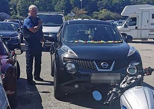 Two dogs rescued after being left for 'over two hours' in sweltering car