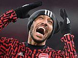 Arsenal vs Newcastle - Premier League: live score and updates