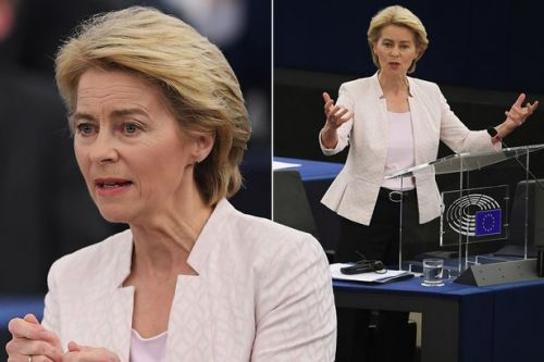 BREAKING Ursula von der Leyen wins MEP vote to become president of European Commission