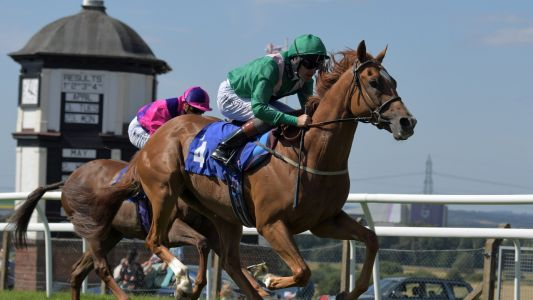 Daily Racing Multiple: Follow the Bear and Alba at Ponty on Monday