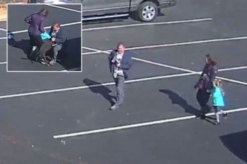 Dog mauls little girl in car park horror as desperate adults try to fight it off