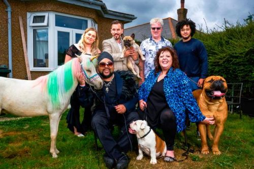 'Pet documentary is bonkers telly that breaks up misery of the news'