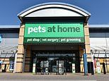 MARKET REPORT: Investors purr as Pets at Home shares soar 14% after it smashes expectations