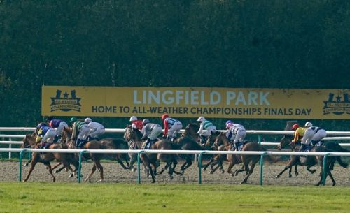 Horse racing tips: Golden Rose Stakes trends - we help you find the winner of the Lingfield race live on ITV