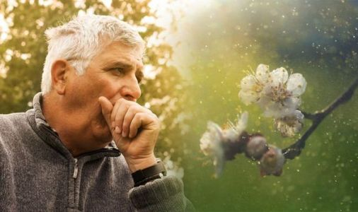 Pollen count: What's the count today? Hay fever myths you should be aware of