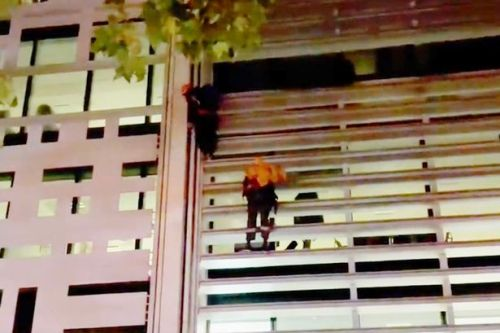 Protesters climb Home Office in Westminster after using ropes to scale building