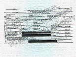 Prince Harry styles himself as Duke of Sussex, HRH on daughter Lilibet Diana's birth certificate