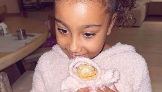 North West's new pet lizard models Skims because of course they have a better wardrobe than us