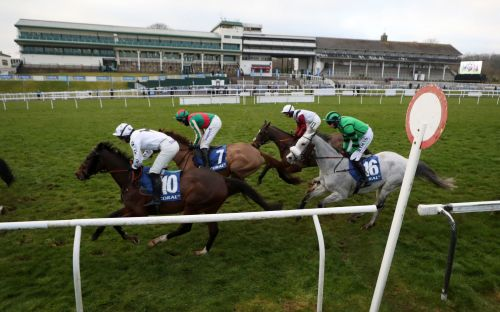 Marlborough racing tips and best bets for Wednesday, January 20