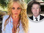 Britney Spears calls dad Jamie 'threatening and scary' and requests CPA Jason Rubin as conservator