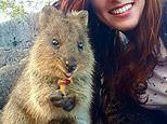 Vet who moved to Australia from the U.S. to chase her dreams dies suddenly