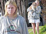 Mischa Barton keeps it casual in a grey sweatshirt as she runs errands with her pup in Los Feliz