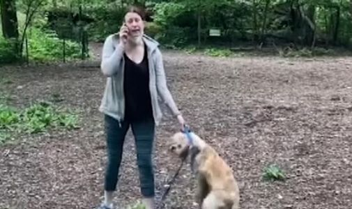 Amy Cooper: Dog walker charged after accusing black man who was bird watching of 'threatening' her