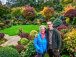 Retired couple Marie and Tony Newton reveal autumn garden in Walsall