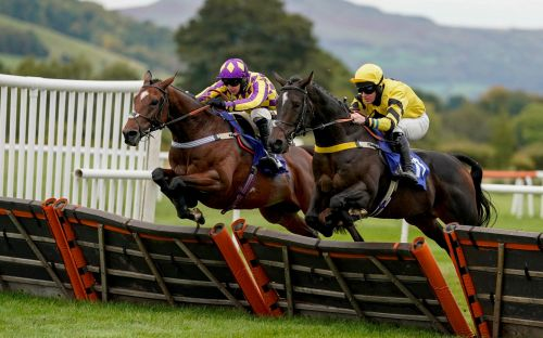 Marlborough racing tips and best bets for Thursday, October 22