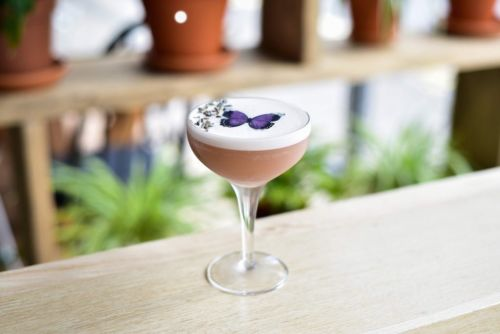 Cosy cocktail domes are coming to Edinburgh for the first time this autumn