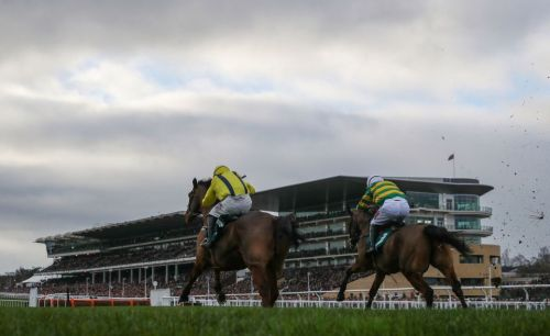 Cheltenham races: tips, racecards and preview for day two of The International meeting on Saturday