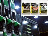 Health experts call for petrol pumps to have cigarette packet-style graphic images