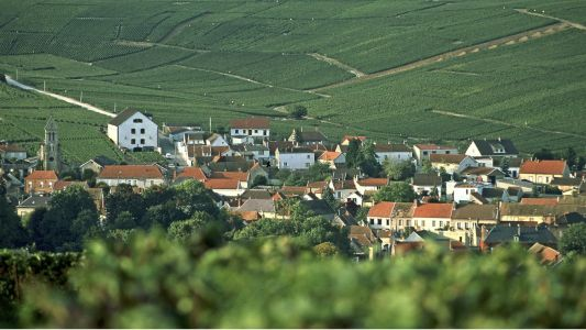 Discover Champagne: France's sleeping giant