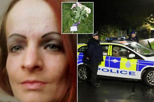 First picture of woman found dead in wheelie bin after 'significant head injury'