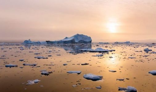 Arctic shock: Melting ice is contributing to spread of DEADLY disease