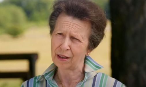 Princess Anne's ONE golden rule at royal events revealed: 'I'm very jealous!'