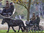Sophie Wessex wraps up warm in a brown coat as she drives a horse and carriage