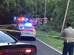 Boy, 7, and his brother, 6, are killed in fiery car crash after taking their grandparents' car
