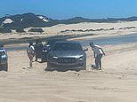 Stockton Beach in NSW taken over by bogged Maseratis as owners are labelled 'idiots'