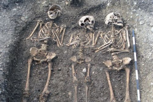Researchers find just two plague strains wiped out 30%-60% of Europe