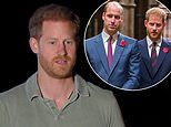 Prince William is 'concerned' for brother Harry's well-being