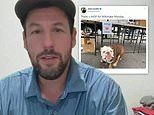 Adam Sandler reacts after IHOP created all-you-can-drink Milkshake Monday in his honor