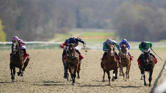 Rhys Williams' Tuesday Racing Tips: Black Hill Storm to bounce back