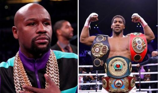 Anthony Joshua compared to Floyd Mayweather after Andy Ruiz win - 'b***h-a** fight'