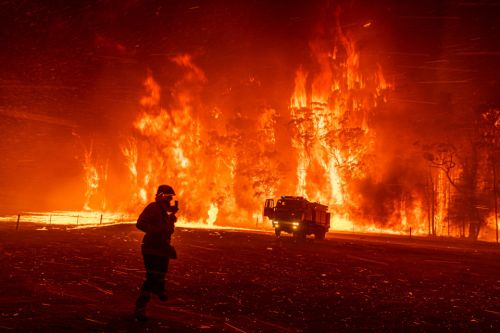Massive wildfires, furious protests and Nazi boat rides make up World Press Photo 2020 nominations