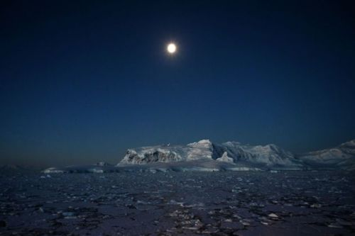 Plane With 38 People On Board Disappears En Route To Antarctica