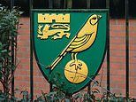 Coronavirus UK: Norwich City become third Premier League club to drop wages of non-playing staff