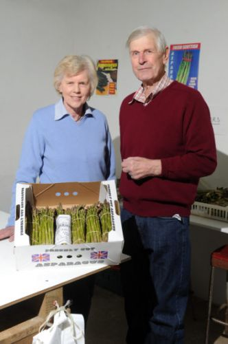Sandy's bumper asparagus crops have proved his college lecturer wrong
