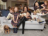 Pregnant Hilaria Baldwin reveals she's fostering a third dog while posing for fashion campaign