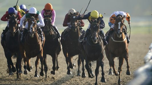 Lingfield Racing Tips: Timeform's three best bets for Sunday