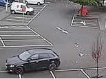 Motorist in Folkestone Kent seen driving car straight over pair of seagulls