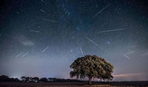 Perseid Meteor Shower NASA live stream: How to watch