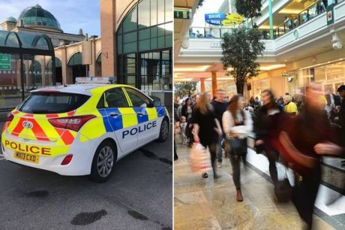 Police used controversial technology to monitor EVERY visitor to one of UK's biggest shopping centres for six months