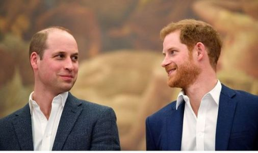 Royal split: William and Harry drift further apart as they split earnings from Diana fund