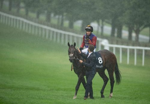 The Queen's Tactical set for Group 1 French mission after impressive July Stakes win for Andrew Balding at Newmarket