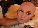 Swedish feminists demand a ban on sex robots because they dehumanise women just like pornography