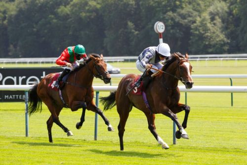 Exciting three-year-old Highest Ground puts unbeaten record on the line in Dante Stakes at York on Thursday