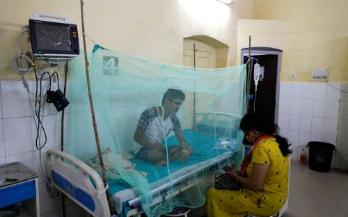 Doctors race to identify unusually deadly dengue strain in India